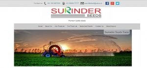 Surinderseeds-Home Page