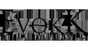 Evokk-wise biz tech