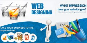 Website Designing Company in Safidon